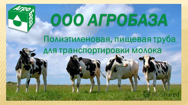 ООО АГРОБАЗА Полиэтиленовая, пищевая труба для транспортировки молока