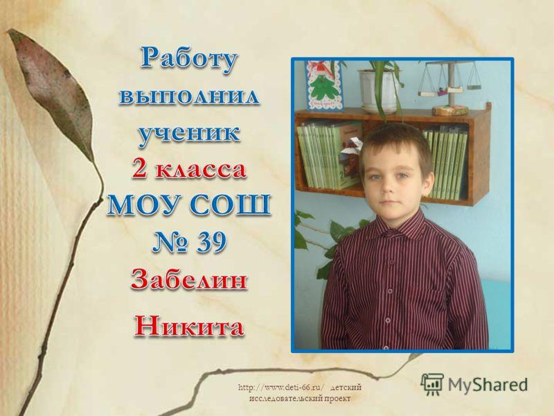 http://www.deti-66.ru/ детский исследовательский проект