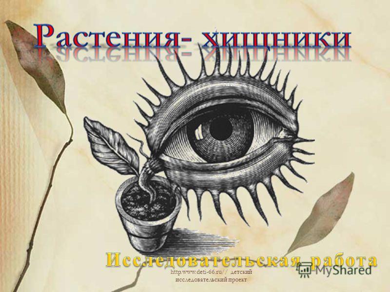 http.www.deti-66.ru// детский исследовательский проект