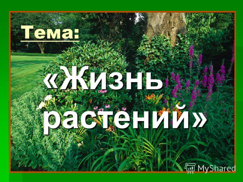 Тема: «Жизнь растений»