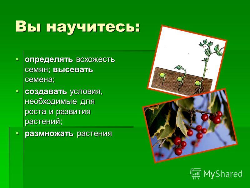 Вы научитесь: определять всхожесть семян; высевать семена; определять всхожесть семян; высевать семена; создавать условия, необходимые для роста и развития растений; создавать условия, необходимые для роста и развития растений; размножать растения ра