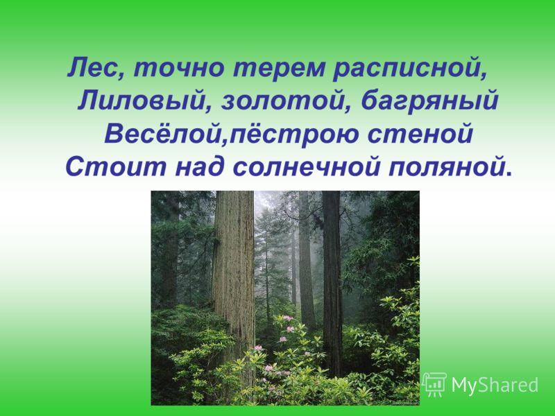 Лес, точно терем расписной, Лиловый, золотой, багряный Весёлой,пёстрою стеной Стоит над солнечной поляной.