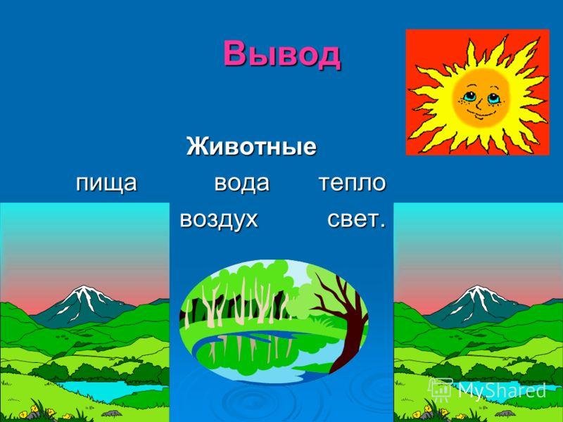 Вывод Животные Животные пища вода тепло пища вода тепло воздух свет. воздух свет.