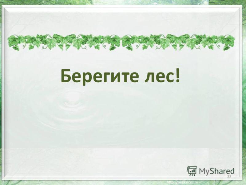Берегите лес! 22