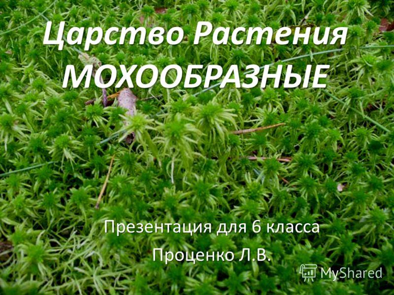 Царство Растения МОХООБРАЗНЫЕ Презентация для 6 класса Проценко Л.В.