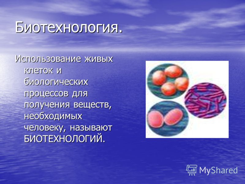 Биотехнология. Использование живых клеток и биологических процессов для получения веществ, необходимых человеку, называют БИОТЕХНОЛОГИЙ.