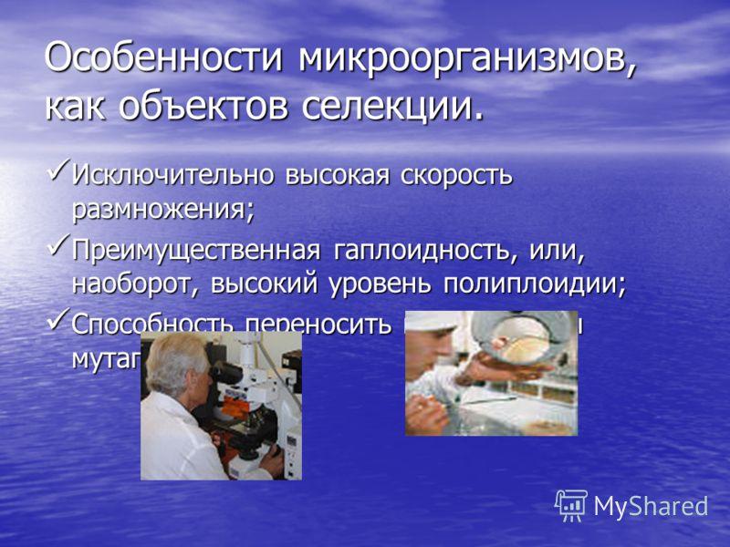 Особенности микроорганизмов, как объектов селекции. Исключительно высокая скорость размножения; Исключительно высокая скорость размножения; Преимущественная гаплоидность, или, наоборот, высокий уровень полиплоидии; Преимущественная гаплоидность, или,