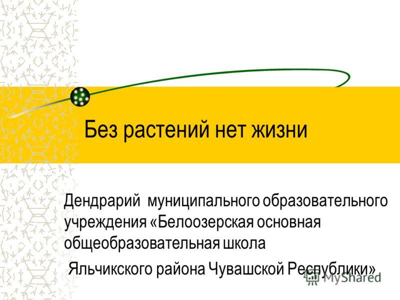 Без растений нет жизни Дендрарий муниципального образовательного учреждения «Белоозерская основная общеобразовательная школа Яльчикского района Чувашской Республики»