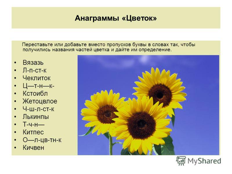 Анаграммы «Цветок» Переставьте или добавьте вместо пропусков буквы в словах так, чтобы получились названия частей цветка и дайте им определение. Вязазь Л-п-ст-к Чеклиток Цт-нк- Кстоибл Жетоцвлое Ч-ш-л-ст-к Лькинпы Т-ч-н Китпес Ол-цв-тн-к Кичвен