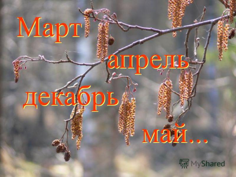 Март май... апрель декабрь