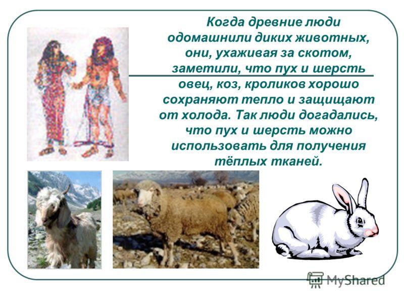Когда древние люди одомашнили диких животных, они, ухаживая за скотом, заметили, что пух и шерсть овец, коз, кроликов хорошо сохраняют тепло и защищают от холода. Так люди догадались, что пух и шерсть можно использовать для получения тёплых тканей.
