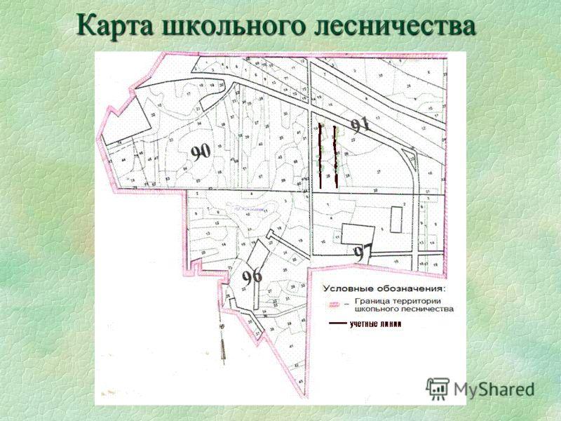 Карта школьного лесничества