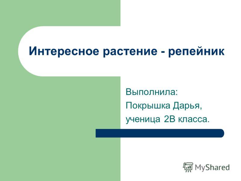 Интересное растение - репейник Выполнила: Покрышка Дарья, ученица 2В класса.