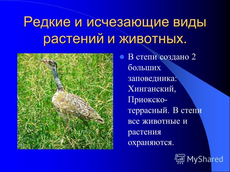 Редкие и исчезающие виды растений и животных. В степи создано 2 больших заповедника: Хинганский, Приокско- террасный. В степи все животные и растения охраняются.