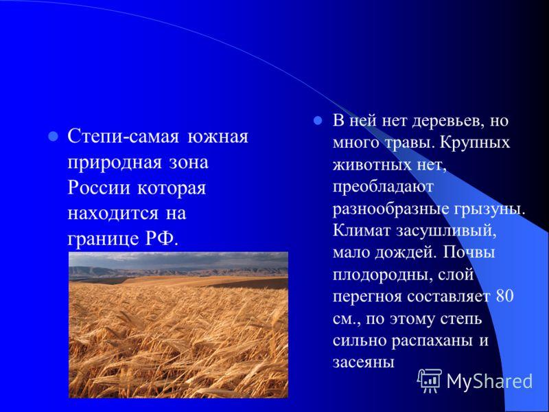 Степи-самая южная природная зона России которая находится на границе РФ. В ней нет деревьев, но много травы. Крупных животных нет, преобладают разнообразные грызуны. Климат засушливый, мало дождей. Почвы плодородны, слой перегноя составляет 80 см., п