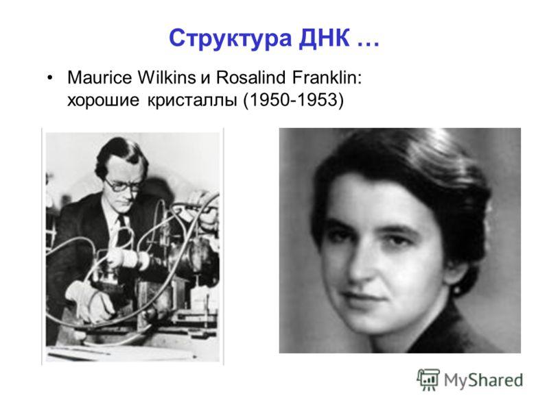 Структура ДНК … Maurice Wilkins и Rosalind Franklin: хорошие кристаллы (1950-1953)