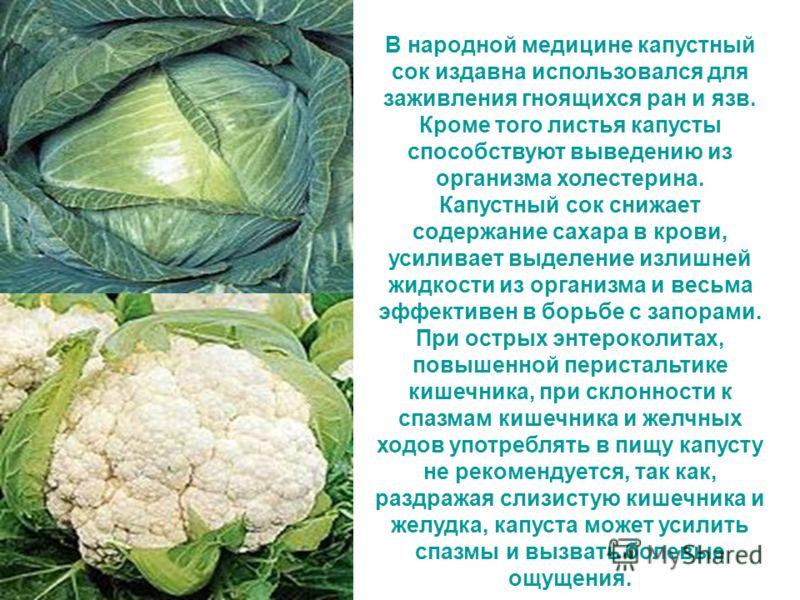 В народной медицине капустный сок издавна использовался для заживления гноящихся ран и язв. Кроме того листья капусты способствуют выведению из организма холестерина. Капустный сок снижает содержание сахара в крови, усиливает выделение излишней жидко