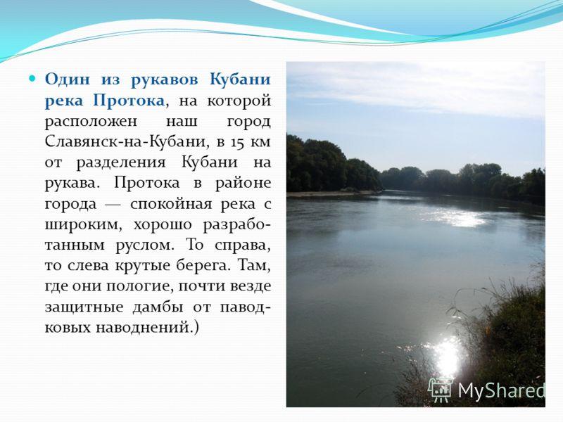 Один из рукавов Кубани река Протока, на которой расположен наш город Славянск-на-Кубани, в 15 км от разделения Кубани на рукава. Протока в районе города спокойная река с широким, хорошо разрабо- танным руслом. То справа, то слева крутые берега. Там,