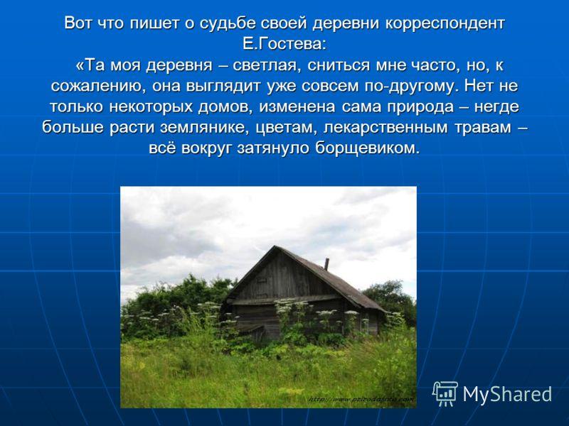 Вот что пишет о судьбе своей деревни корреспондент Е.Гостева: «Та моя деревня – светлая, сниться мне часто, но, к сожалению, она выглядит уже совсем по-другому. Нет не только некоторых домов, изменена сама природа – негде больше расти землянике, цвет