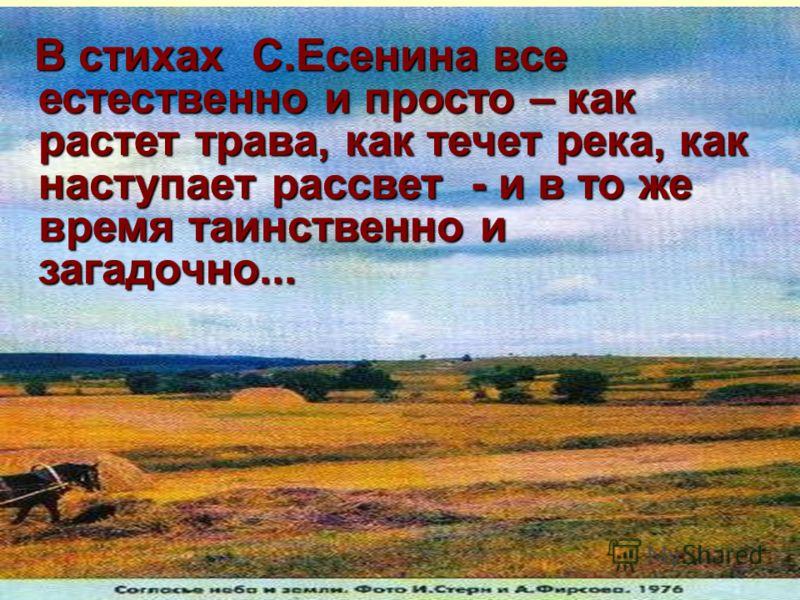 В стихах С.Есенина все естественно и просто – как растет трава, как течет река, как наступает рассвет - и в то же время таинственно и загадочно...