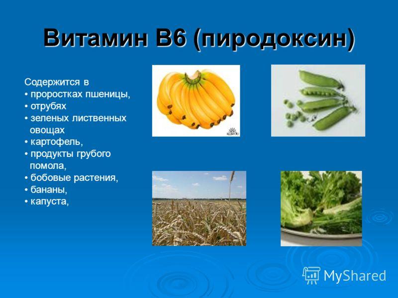 Витамин В6 (пиродоксин) Содержится в проростках пшеницы, отрубях зеленых лиственных овощах картофель, продукты грубого помола, бобовые растения, бананы, капуста,