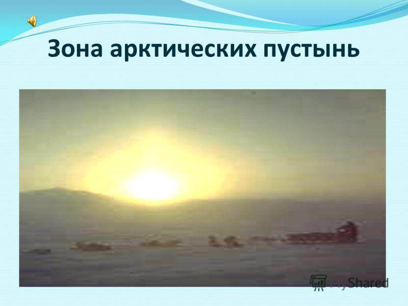 Экспедиция в царство холода, снега и льда