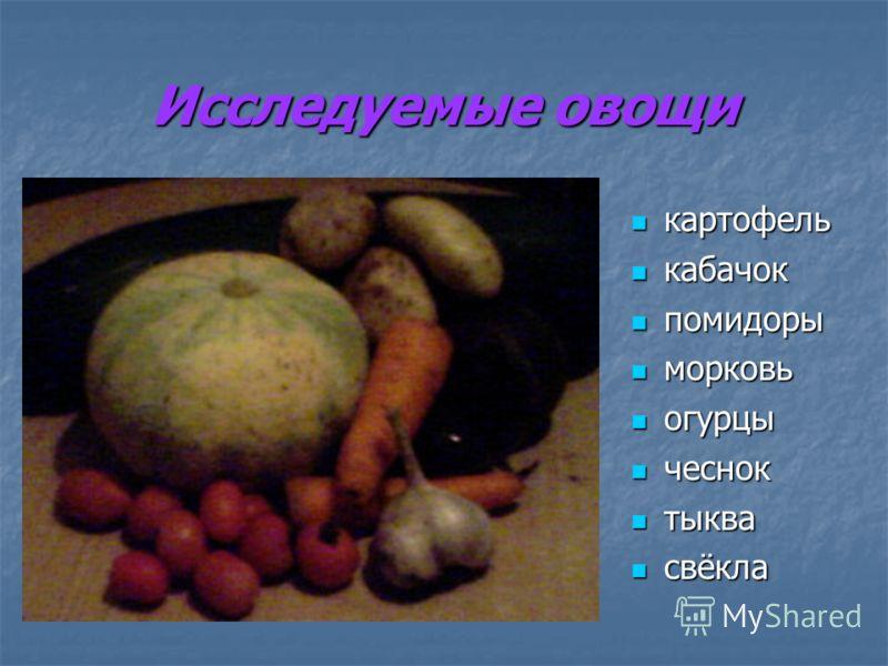 Исследуемые овощи картофель картофель кабачок кабачок помидоры помидоры морковь морковь огурцы огурцы чеснок чеснок тыква тыква свёкла свёкла