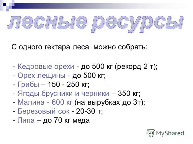 С одного гектара леса можно собрать: - Кедровые орехи - до 500 кг (рекорд 2 т); - Орех лещины - до 500 кг; - Грибы – 150 - 250 кг; - Ягоды брусники и черники – 350 кг; - Малина - 600 кг (на вырубках до 3т); - Березовый сок - 20-30 т; - Липа – до 70 к