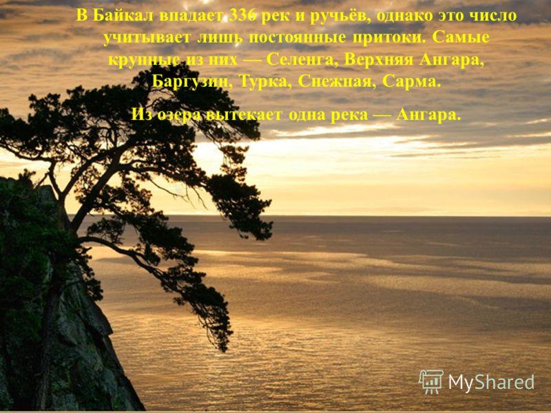 В Байкал впадает 336 рек и ручьёв, однако это число учитывает лишь постоянные притоки. Самые крупные из них Селенга, Верхняя Ангара, Баргузин, Турка, Снежная, Сарма. Из озера вытекает одна река Ангара.