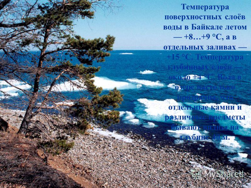 Температура поверхностных слоёв воды в Байкале летом +8…+9 °С, а в отдельных заливах +15 °C. Температура глубинных слоёв около +4 °C. Вода в озере настолько прозрачна, что отдельные камни и различные предметы бывают видны на глубине 40 м.