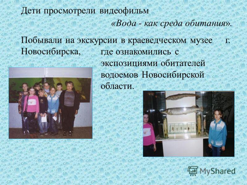 Дети просмотрели видеофильм «Вода - как среда обитания». Побывали на экскурсии в краеведческом музее г. Новосибирска, где ознакомились с экспозициями обитателей водоемов Новосибирской области.