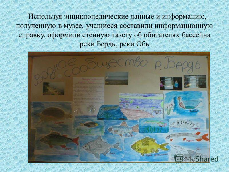 Используя энциклопедические данные и информацию, полученную в музее, учащиеся составили информационную справку, оформили стенную газету об обитателях бассейна реки Бердь, реки Обь