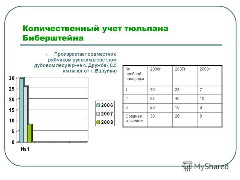 Количественный учет тюльпана Биберштейна Произрастает совместно с рябчиком русским в светлом дубовом лесу в р-не с. Дружба ( 0.5 км на юг от г. Валуйки) пробной площадки 2006г2007г2008г 130287 2374010 323108 Среднее значение 30268