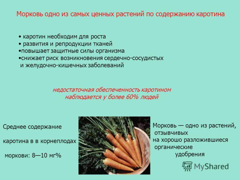 каротин необходим для роста развития и репродукции тканей повышает защитные силы организма снижает риск возникновения сердечно-сосудистых и желудочно-кишечных заболеваний Среднее содержание каротина в в корнеплодах моркови: 810 мг% недостаточная обес