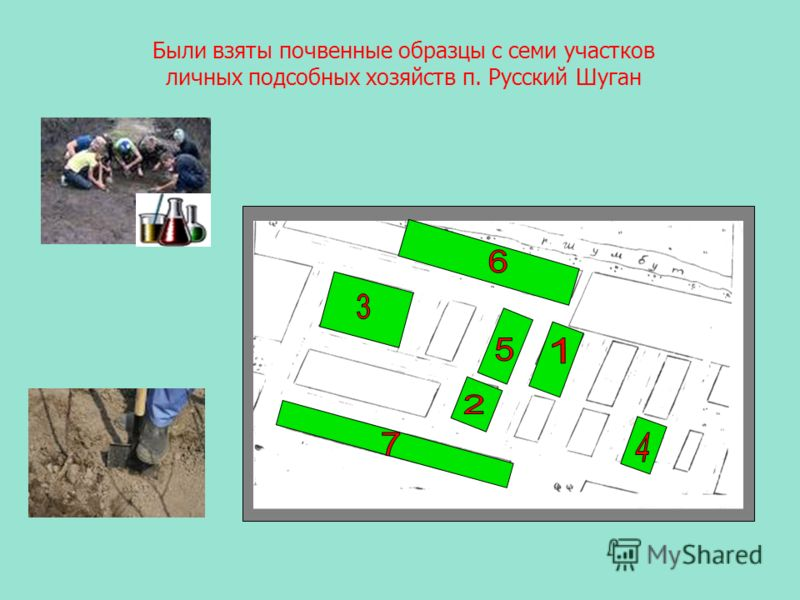 Были взяты почвенные образцы с семи участков личных подсобных хозяйств п. Русский Шуган