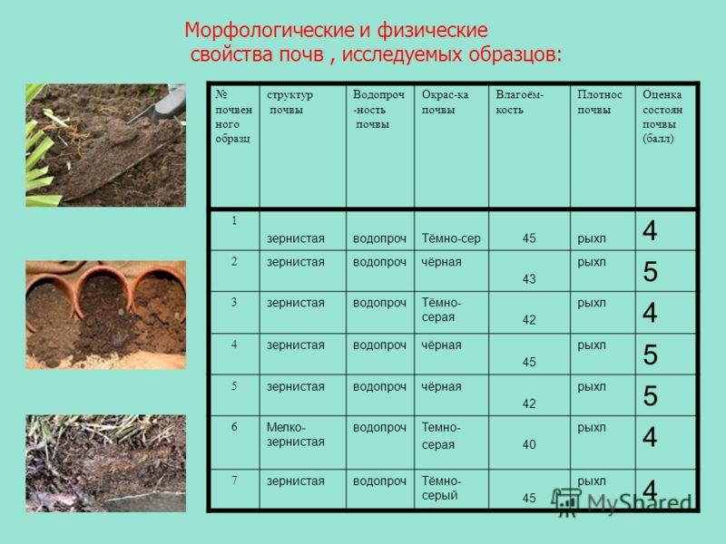 Морфологические и физические свойства почв, исследуемых образцов: почвен ного образц структур почвы Водопроч -ность почвы Окрас-ка почвы Влагоём- кость Плотнос почвы Оценка состоян почвы (балл) 1 зернистаяводопрочТёмно-сер45рыхл 4 2 зернистаяводопроч