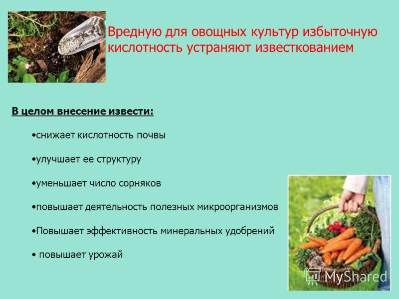 Вредную для овощных культур избыточную кислотность устраняют известкованием В целом внесение извести: снижает кислотность почвы улучшает ее структуру уменьшает число сорняков повышает деятельность полезных микроорганизмов Повышает эффективность минер