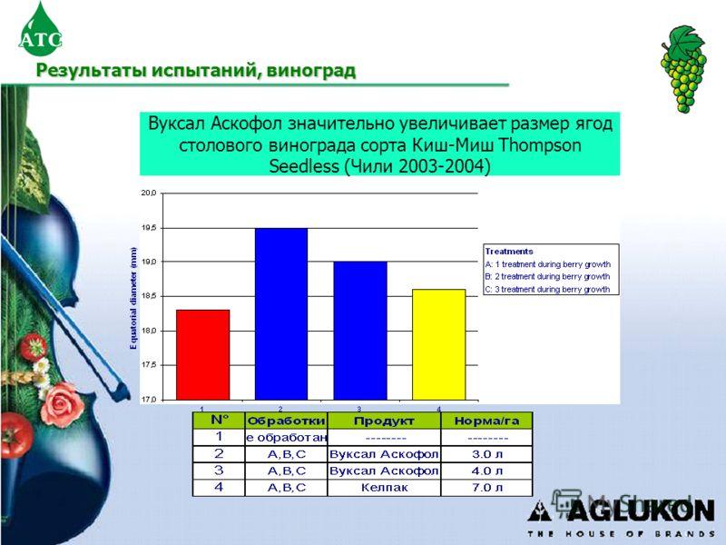 Вуксал Аскофол значительно увеличивает размер ягод столового винограда сорта Киш-Миш Thompson Seedless (Чили 2003-2004) Результаты испытаний, виноград