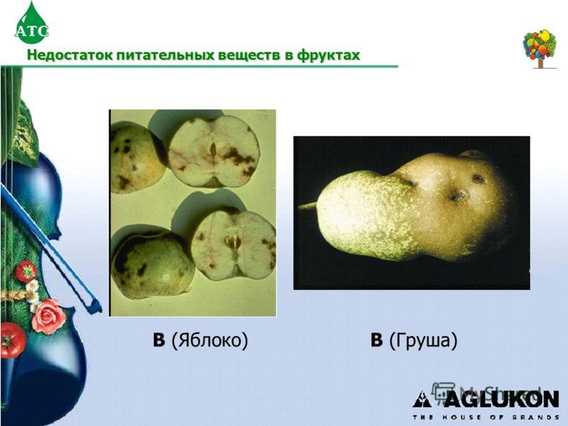 B (Яблоко)B (Груша) Недостаток питательных веществ в фруктах