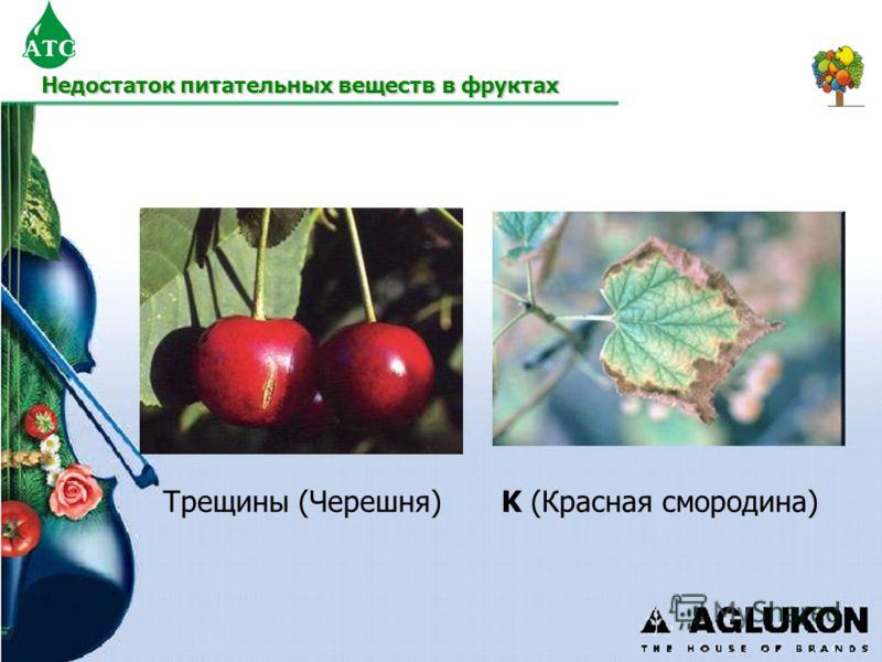 Трещины (Черешня)K (Красная смородина) Недостаток питательных веществ в фруктах