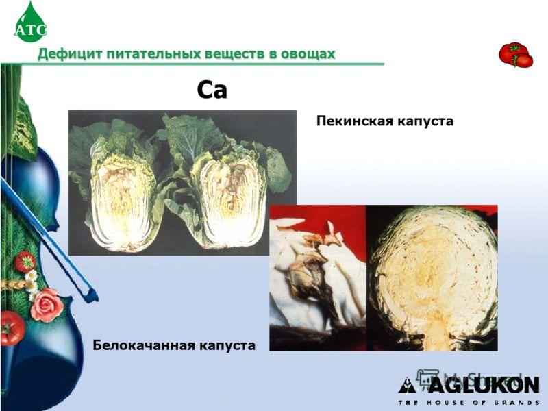 Белокачанная капуста Пекинская капуста Ca Дефицит питательных веществ в овощах