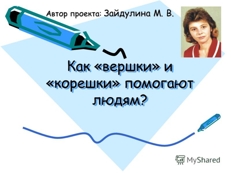 Как «вершки» и «корешки» помогают людям? Автор проекта: Зайдулина М. В.