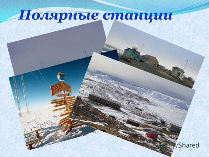 Полярные станции