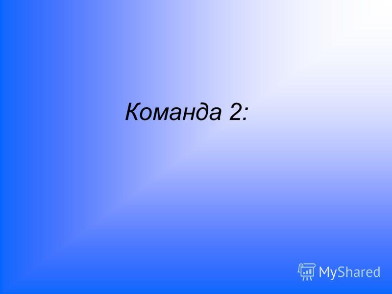 Команда 2:
