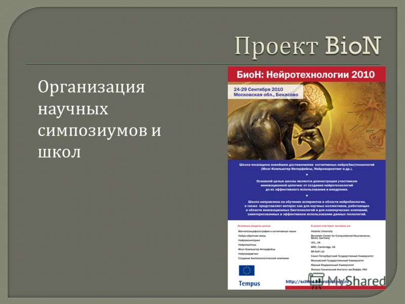 Организация научных симпозиумов и школ