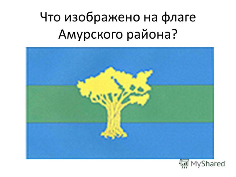 Что изображено на флаге Амурского района?