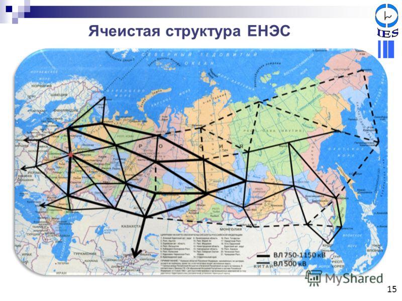 Ячеистая структура ЕНЭС 15