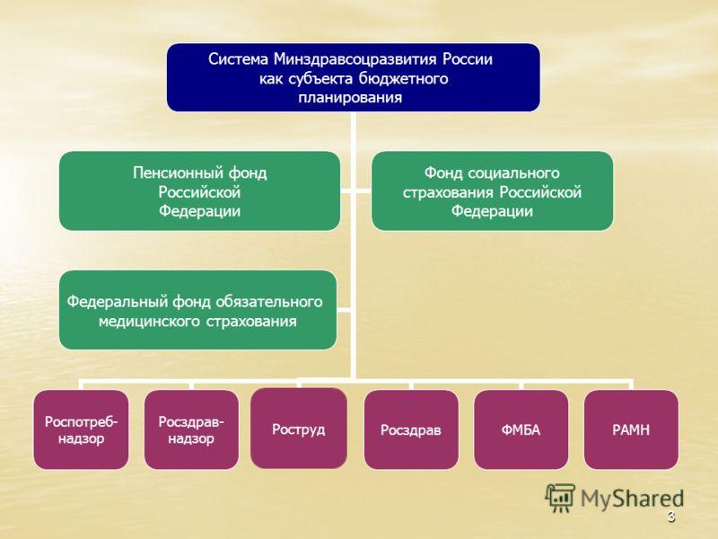 3 Система Минздравсоцразвития России как субъекта бюджетного планирования Роспотреб- надзор Росздрав- надзор РострудРосздравФМБАРАМН Пенсионный фонд Российской Федерации Фонд социального страхования Российской Федерации Федеральный фонд обязательного