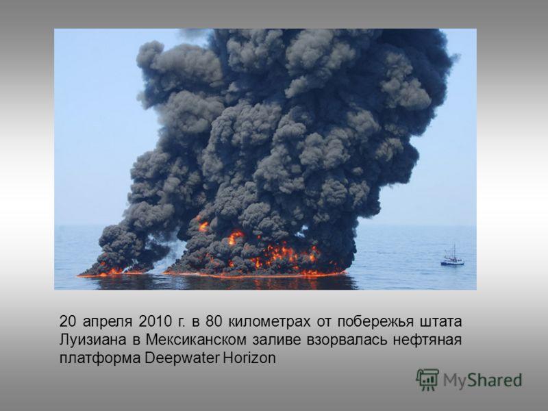 20 апреля 2010 г. в 80 километрах от побережья штата Луизиана в Мексиканском заливе взорвалась нефтяная платформа Deepwater Horizon