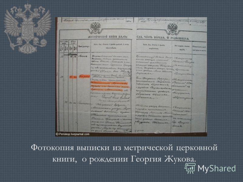 Фотокопия выписки из метрической церковной книги, о рождении Георгия Жукова.